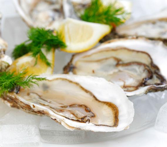 oesters goed voor collageenaanmaak