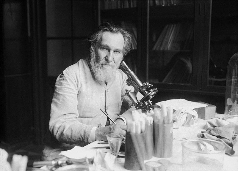 Elie Metchnikoff was zijn tijd vooruit in het herkennen van de rol van het darmmicrobioom op gezondheid, een jeugdige huid en een lang leven.